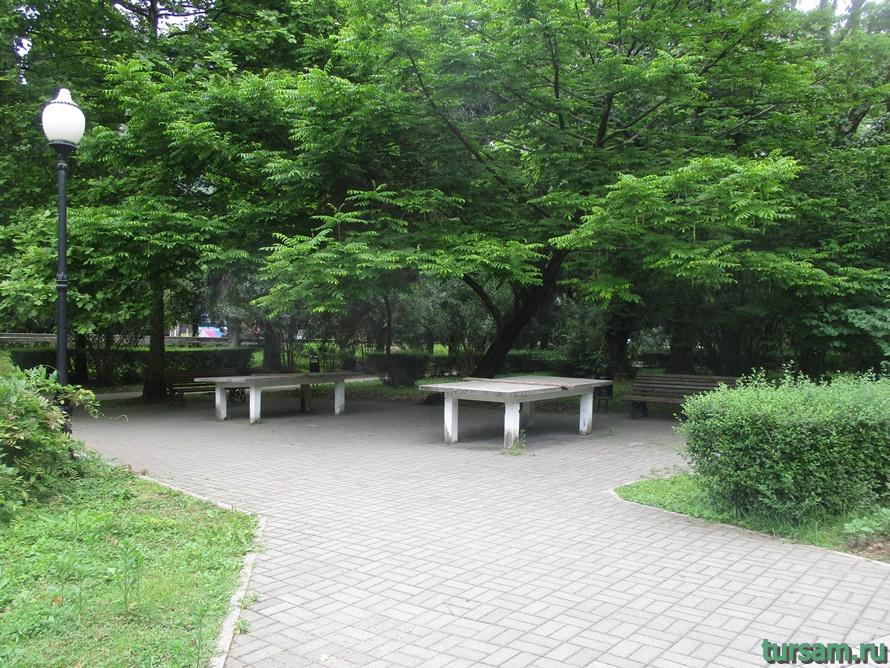 Приморский парк в Новом Афоне в Абхазии-26