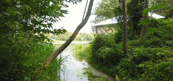 Природа деревни Щелково Конаковский район