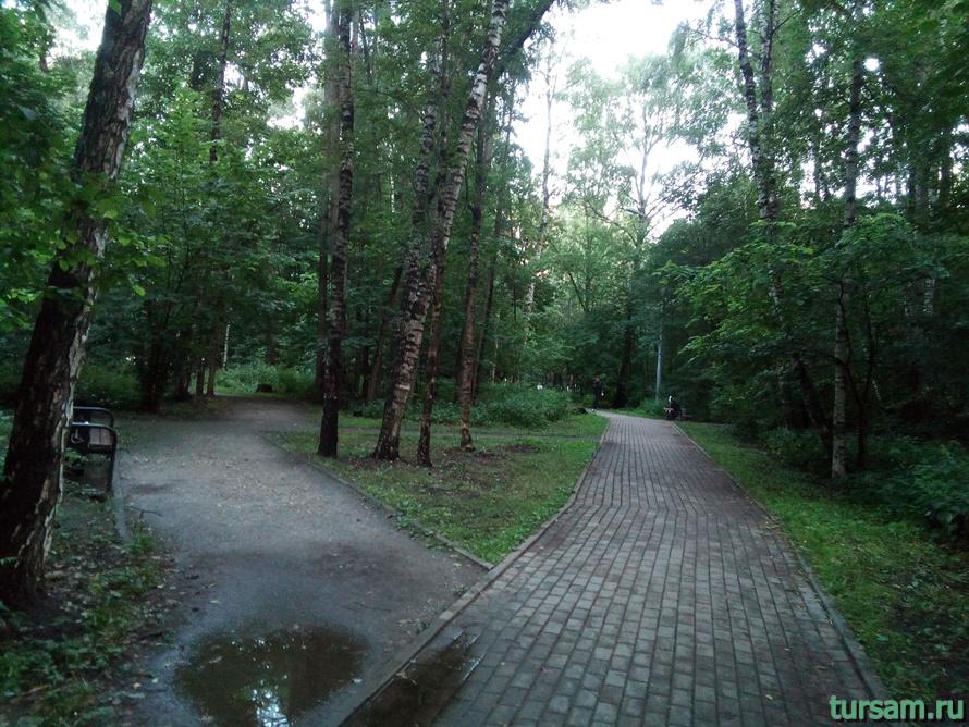 Природный заказник Медведковский-5
