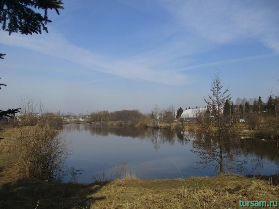 Река Любосеевка во Фрязино-2