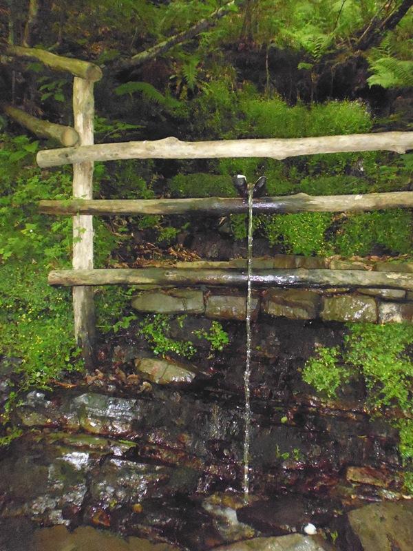 Родник на территории змейковских водопадов