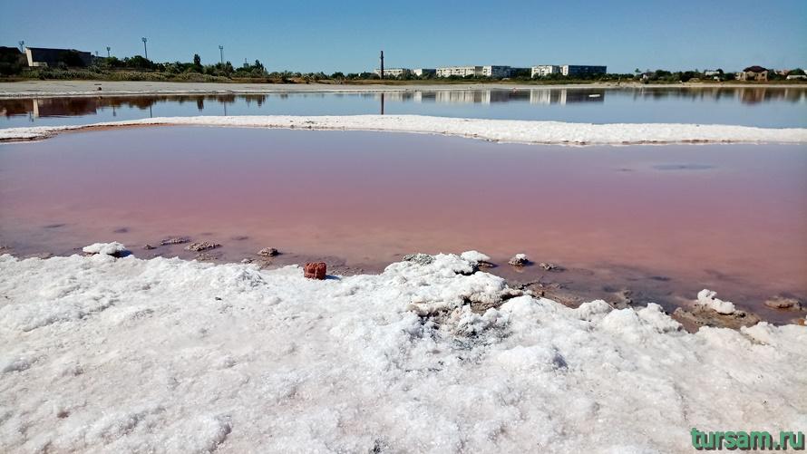 Розовое озеро в Заозерном-2