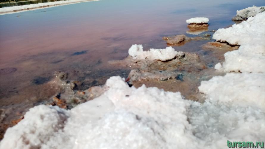 Розовое озеро в Заозерном-4