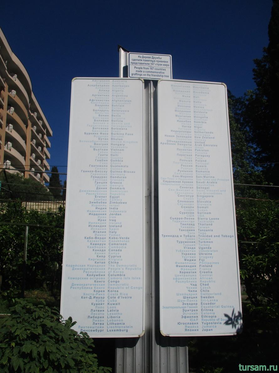 Сад-музей Дерево Дружбы в Сочи-8
