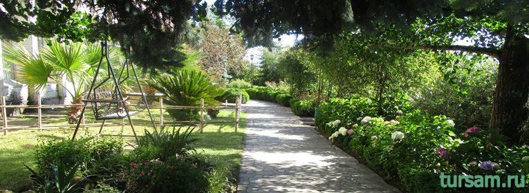 Сад-музей Дерево Дружбы в Сочи