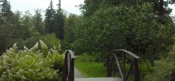 Сиреневый сад в Сокольниках