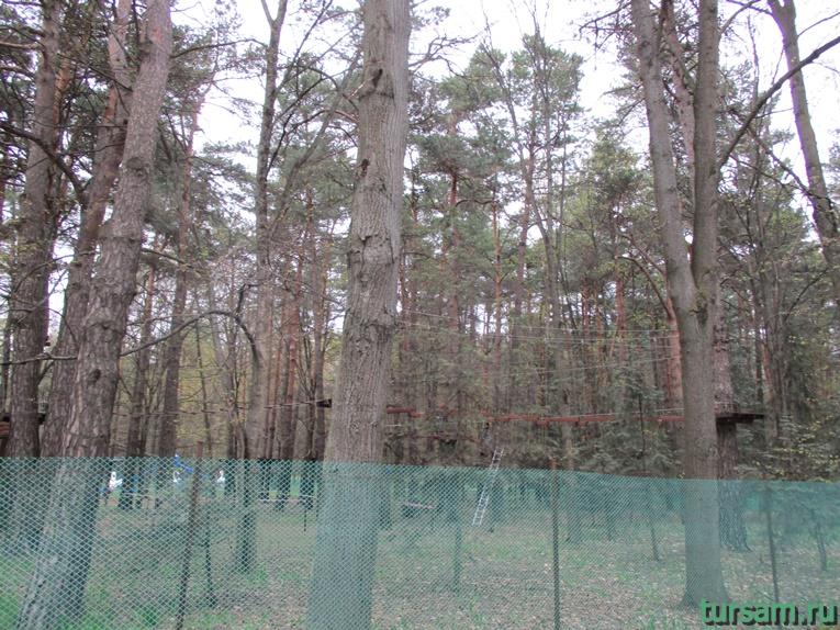 Веревочный парк в парке имени Челюскинцев