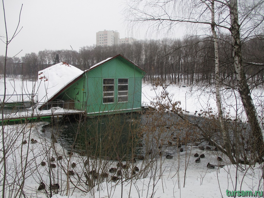Зооуголок в парке Белоусова-4
