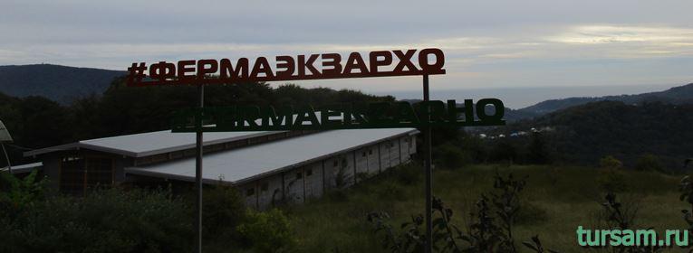 Ферма Экзархо в Сочи