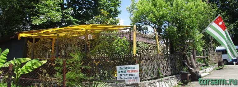 Лыхненская чайная фабрика