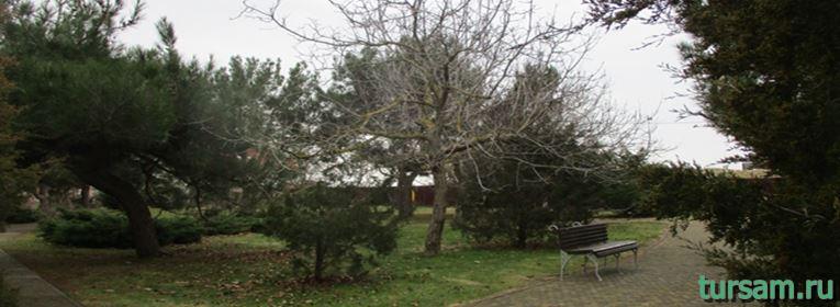 Парк Ореховая роща в Анапе-14