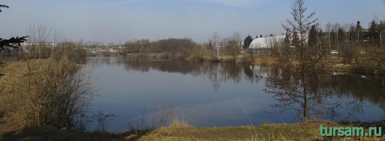 Река Любосеевка во Фрязино